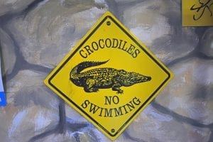 interesting facts about crocodiles