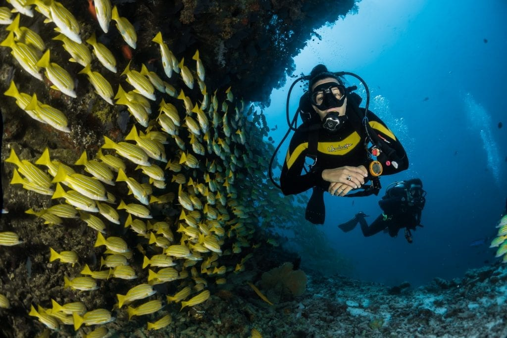 scuba diving facts