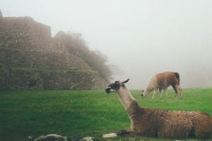 facts about Machu Picchu