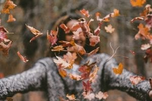 fun facts about autumn