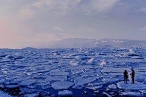 Arctic Facts
