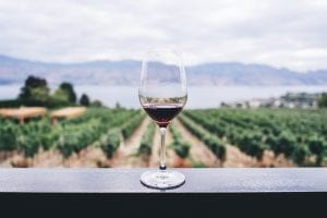 wine nutrition facts